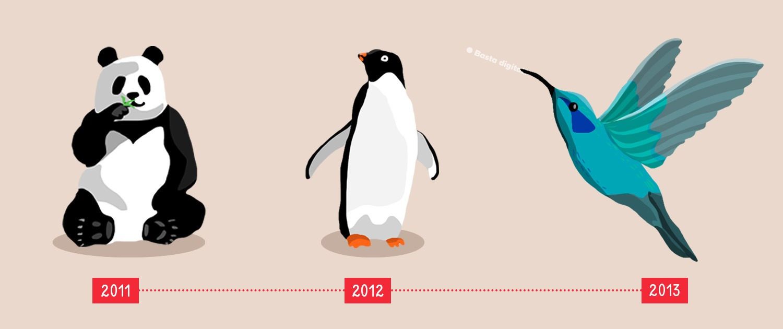 panda tucniak a kolibrik ako aktualizacie google algoritmu